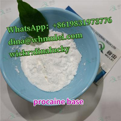 Procaine base powder CAS:59-46-1 buy procaine base powder sell procaine powderprice   China supplier clear customs fast and safe