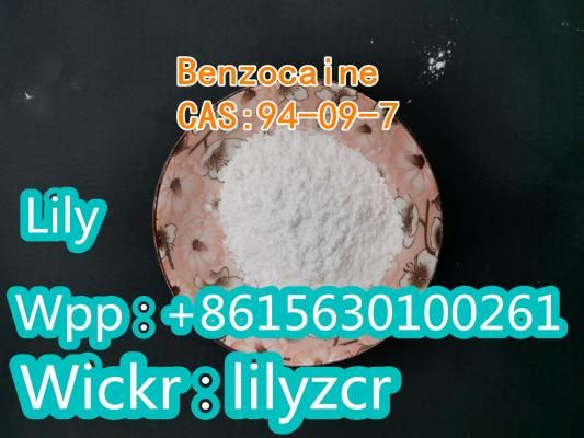 DIMETHYLPROCAINE   CAS:10012-47-2     Whatsapp:+8615630100261  Wickr:lilyzcr