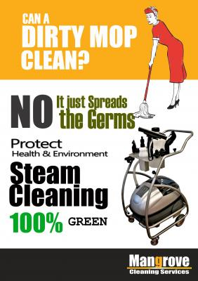 Mangrove Cleaning Services