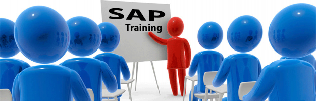 SAP Consultant Training @ AED 1299* only