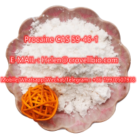 Manufacture of high-quality Procaine CAS 59-46-1