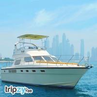 Luxury Car Rental Dubai | Yacht Rental Dubai | Helicopter Tour Dubai | Tripzy