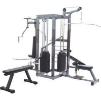 Best Strength Gym Equipment Manufacturers in Dubai | Liftdex