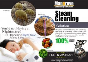 Office, Sofa, Tiles and Grout, Pantry, Upholstery, Carpet,  Deep Steam Cleaning Services,