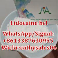 Chemical Product Lidocaine CAS 137-58-6/Lidocaine HCl CAS 73-78-9 with Best Price