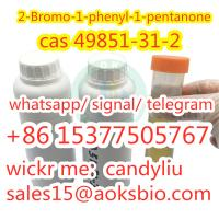 2-Bromovalerophenone factory price cas 49851-31-2, china factory 49851-31-2