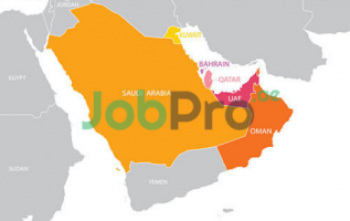Jobpro I.T and HR Consultancy FZE.