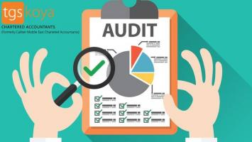 chartered accountant firms in dubai | Accounting and Auditing Firms in Dubai